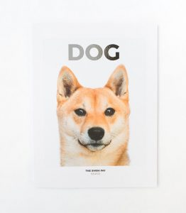 10 publishers - Dog Mag