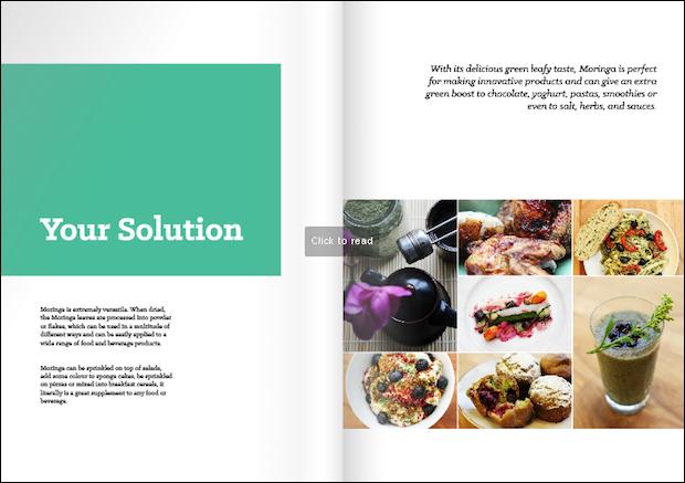 Roots food brochure