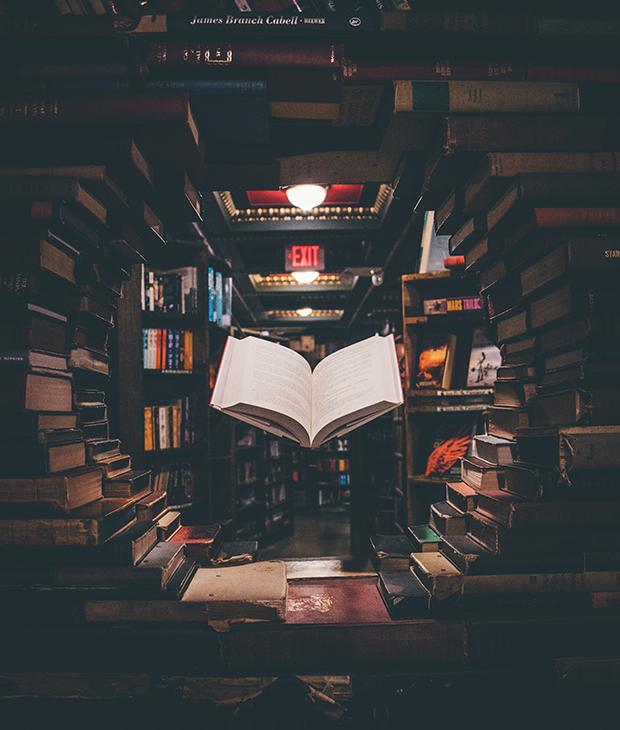 books vs. ebooks no internet