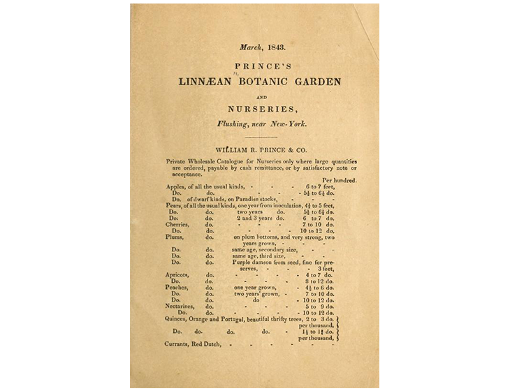 prince-nursery-story-catalog