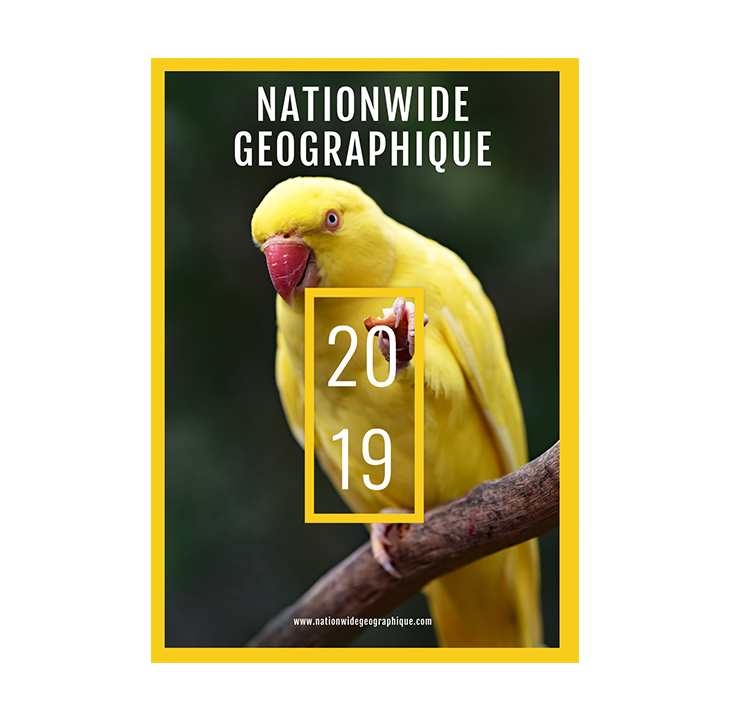 wildlife-magazine-template