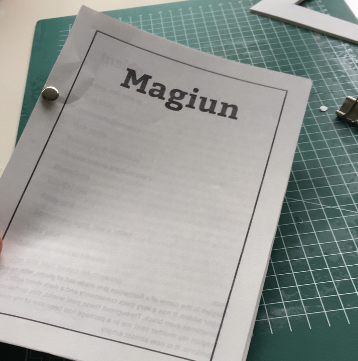 process of making a zine - choosing a title