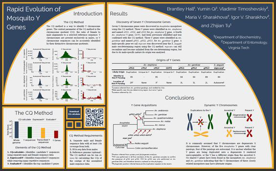 example of how to make an academic poster