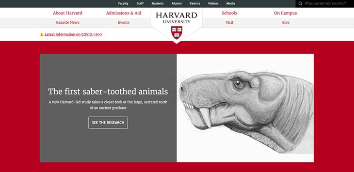 harvard website homepage