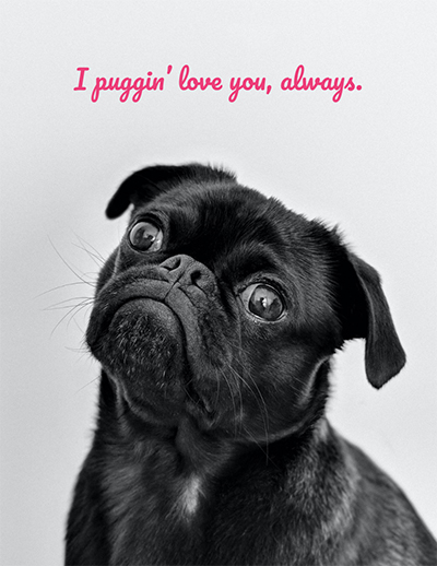 What to write in a valentines day card for your pet