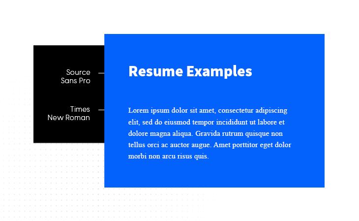 Source Sans Pro & Times New Roman google font combination example