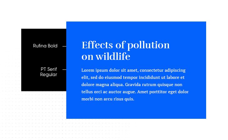 rufina bold and pt serif regular google font combination