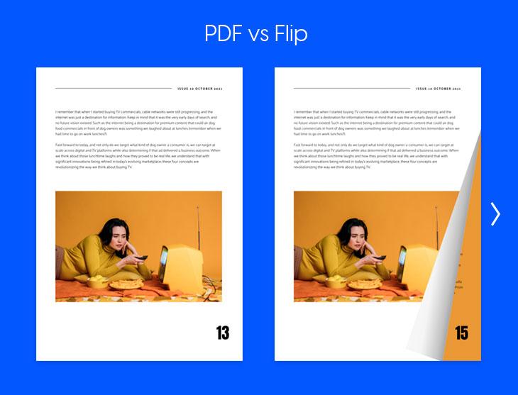 PDF and flipbook comparison