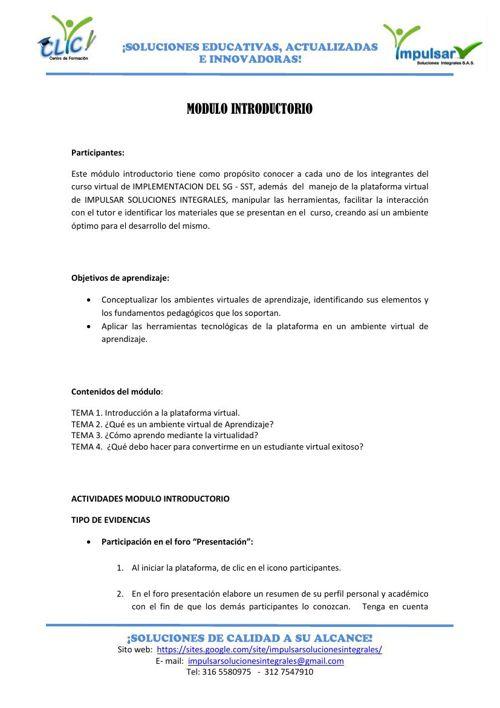 Modulo Introductorio Implementación Sg Sst By Centro De