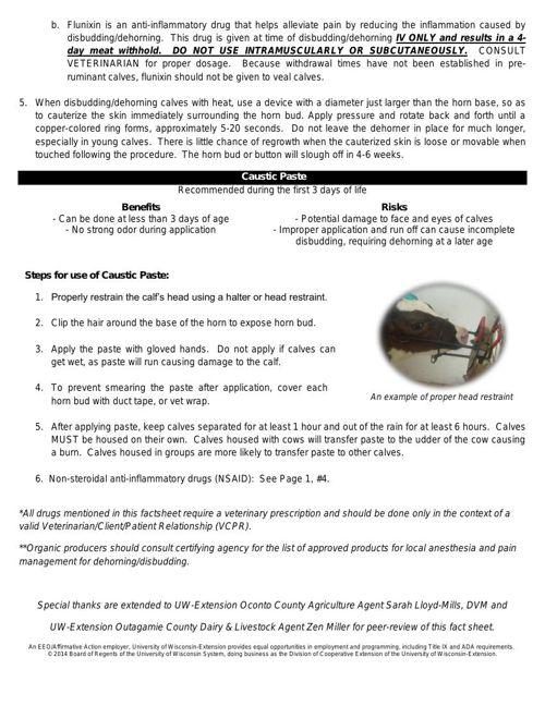 UWEX Dehorning / Debudding Dairy CalvesFactsheet by