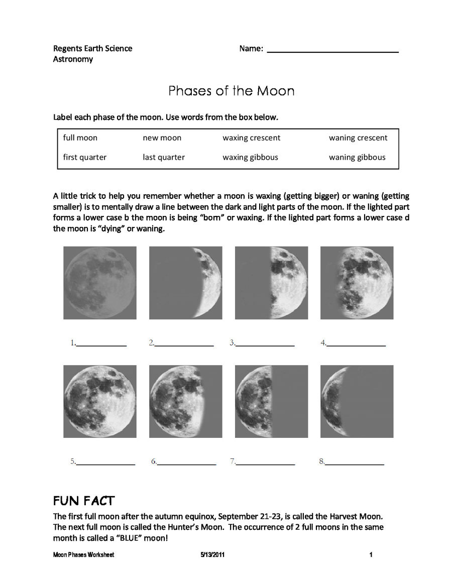 worksheet moon phase worksheet grass fedjp worksheet study site. Black Bedroom Furniture Sets. Home Design Ideas