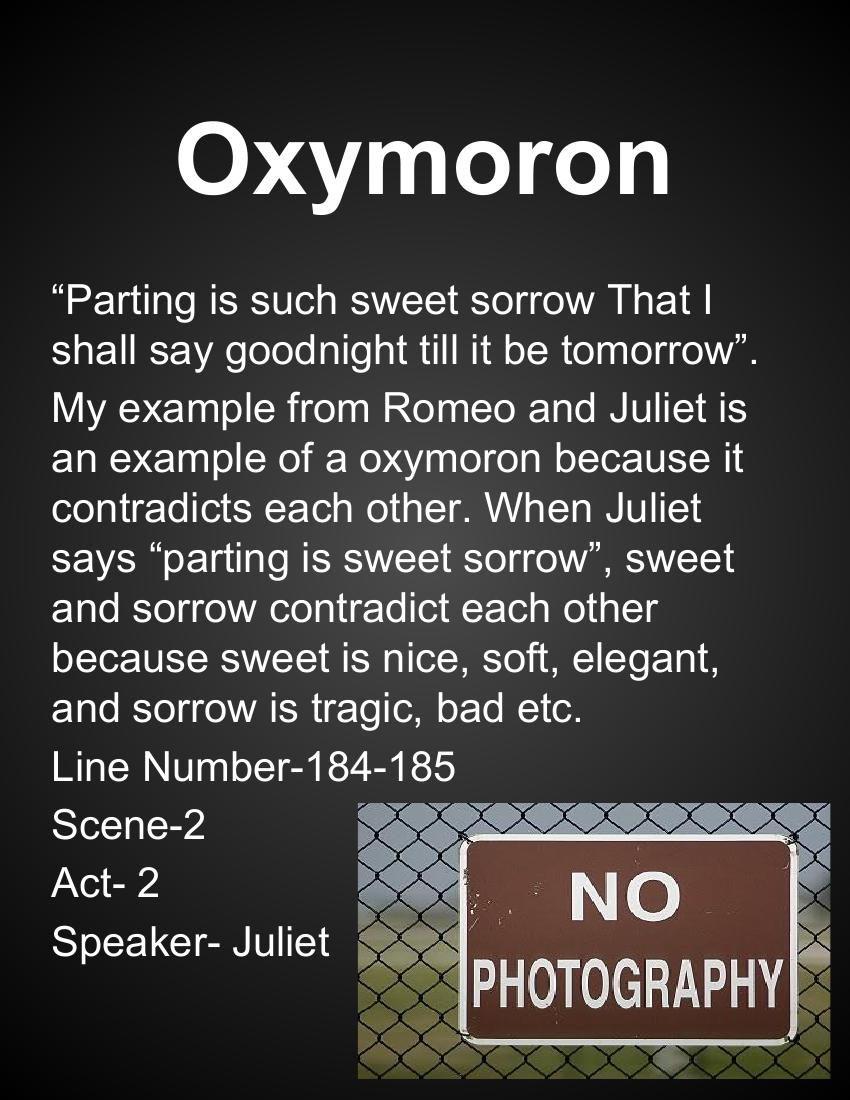 Romeo And Juliet Scrapbook 1