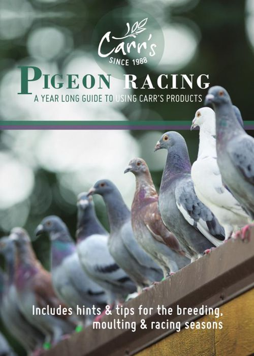 Pigeon - Carr's - Natural Pigeon Supplements