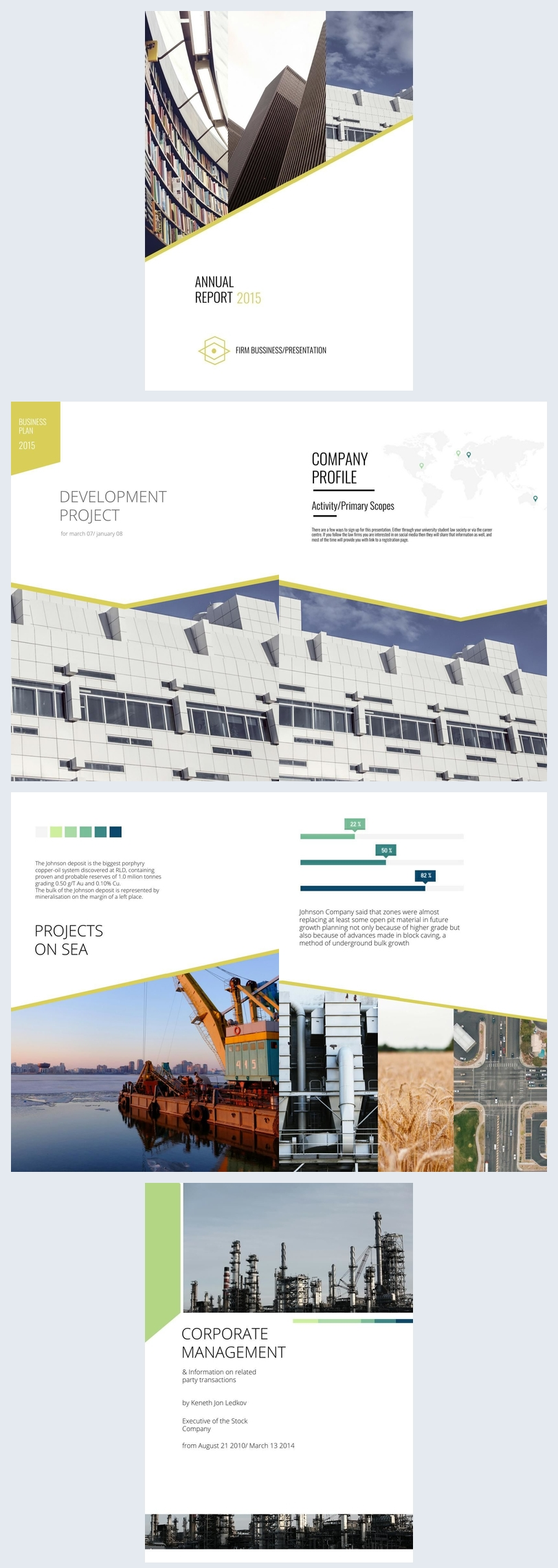 Business Annual Report Design
