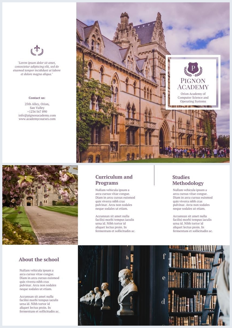 Elegant School Trifold Brochure Design