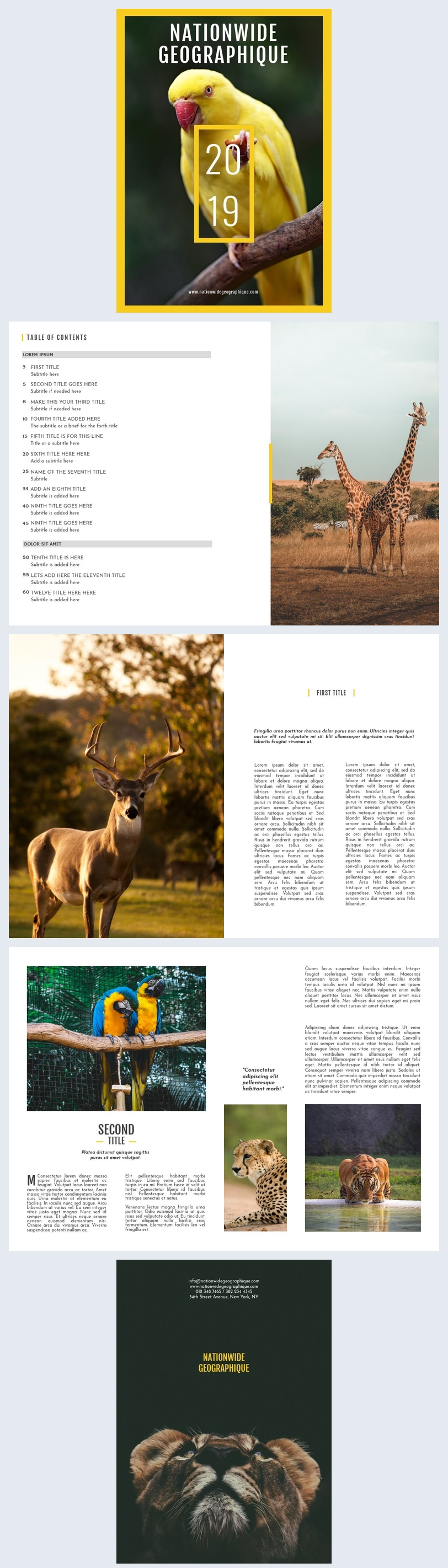 Animals & Wildlife Magazine Template