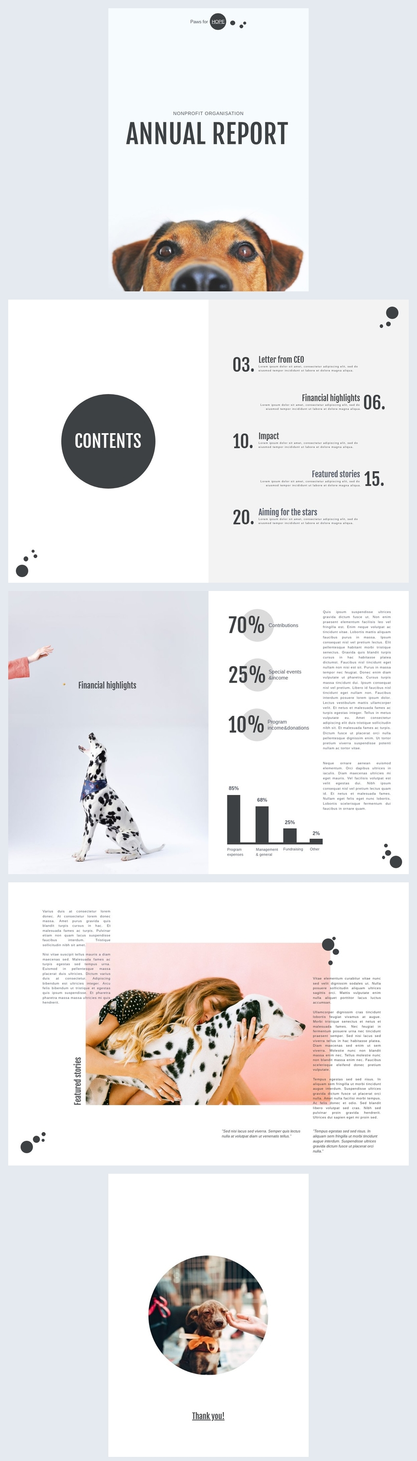 Modèle de rapport annuel pour organisation à but non lucratif