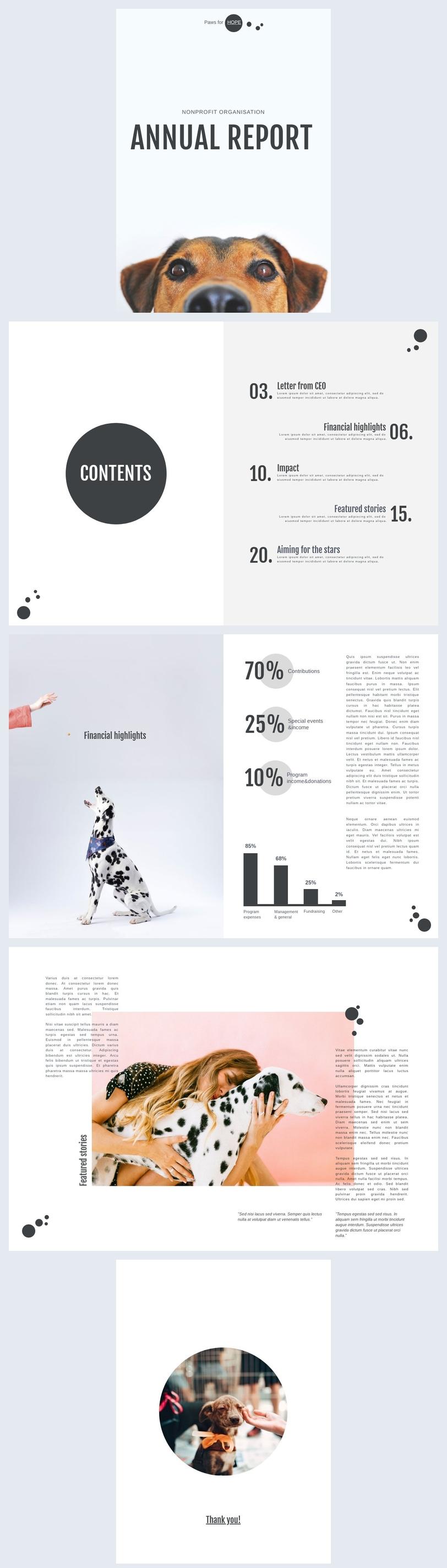 Modelo de Relatório Anual para Organização Sem Fins Lucrativos