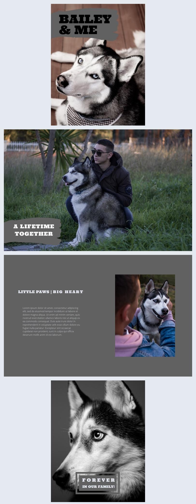 Álbum fotográfico póstumo de mascotas
