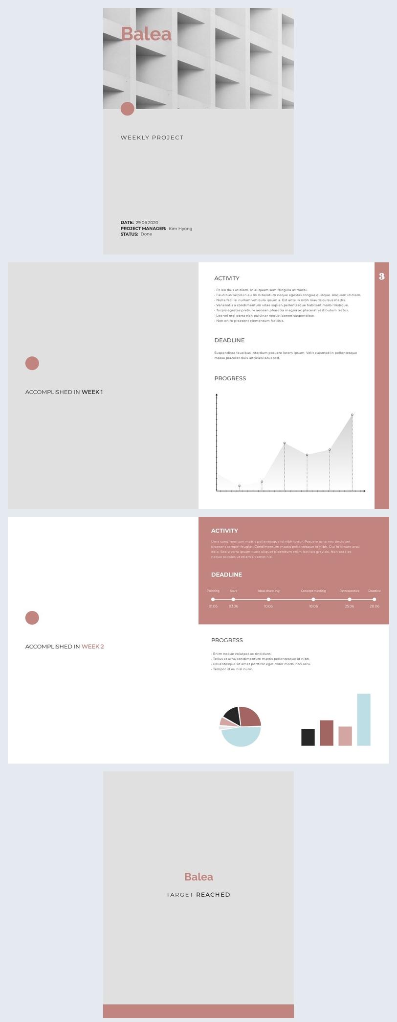 Modelo de Relatório Moderno Sobre o Status do Projeto Semanal