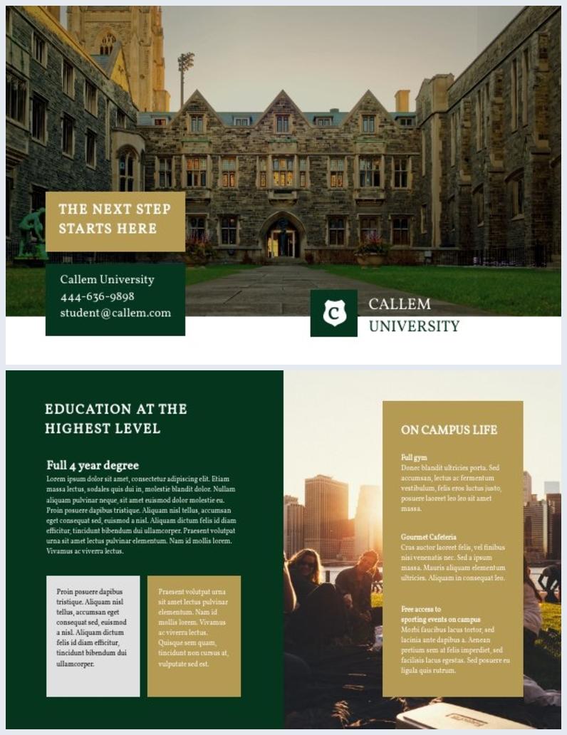 College Bi-Fold Brochure Layout Design