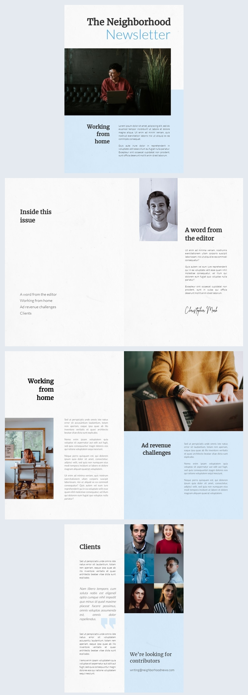 Publisher Newsletter Example Idea