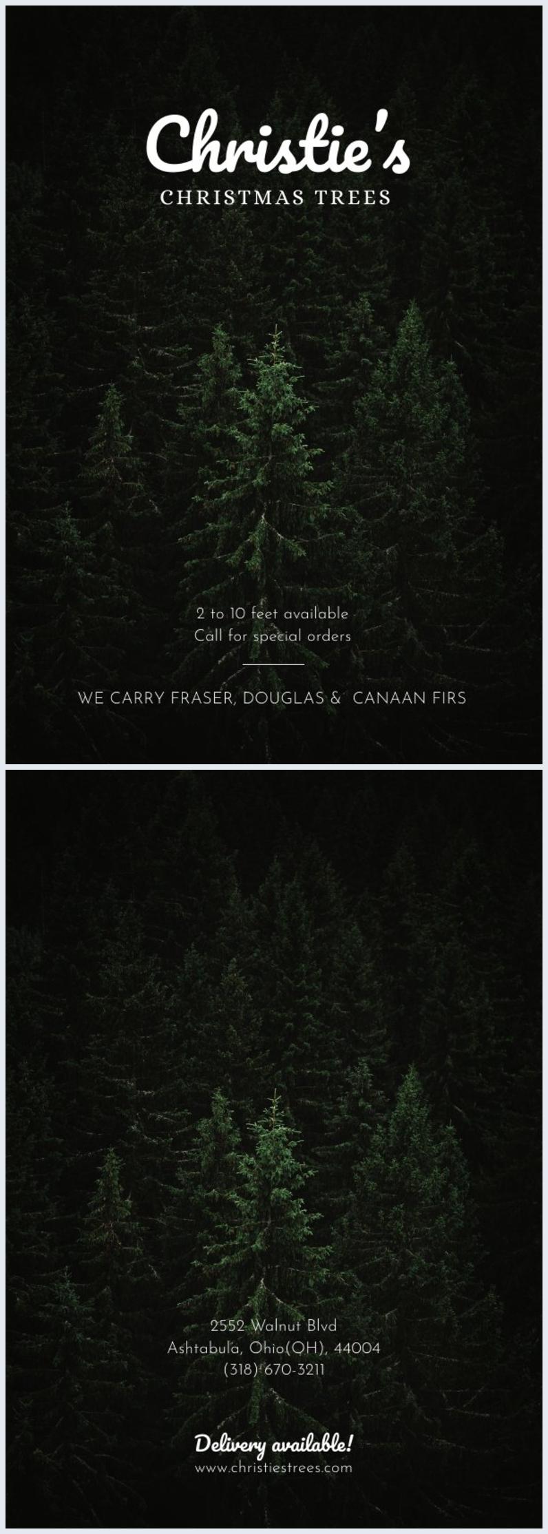Esempio di grafica per volantino di negozio degli alberi di Natale