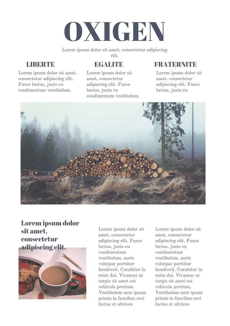 Online Newspaper Design